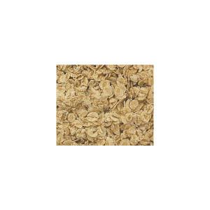 Barley - Rolled Oats