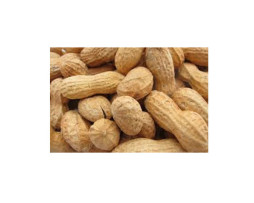 Peanuts - Roasted in Shell